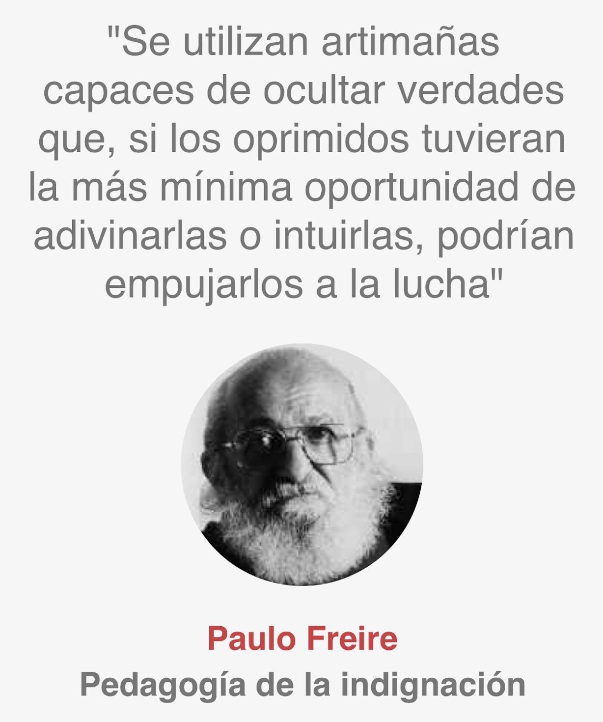 Cita Freire